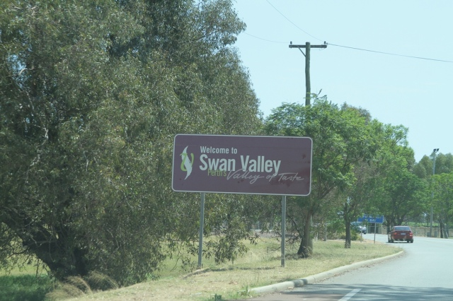 chegada a Swan Valey
