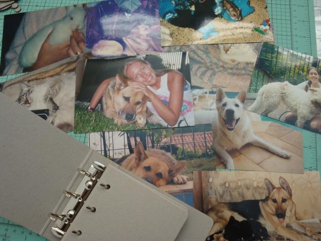 Scrap mini Pets 001