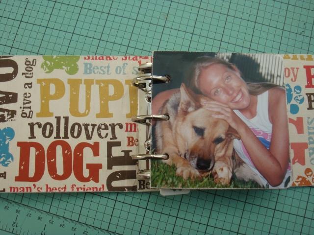 Scrap mini Pets 010