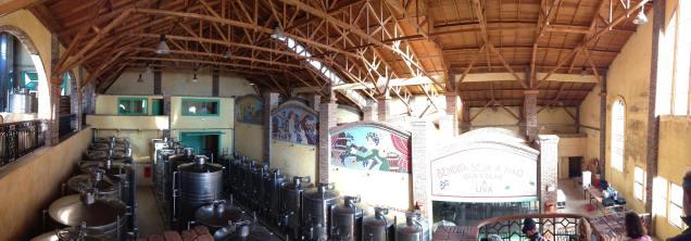 vinicola Vila Francione