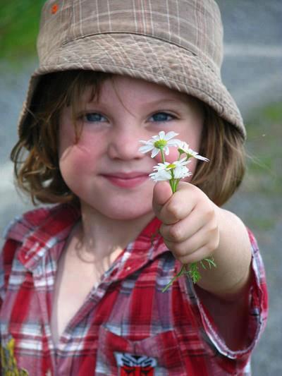 uma flor para vc